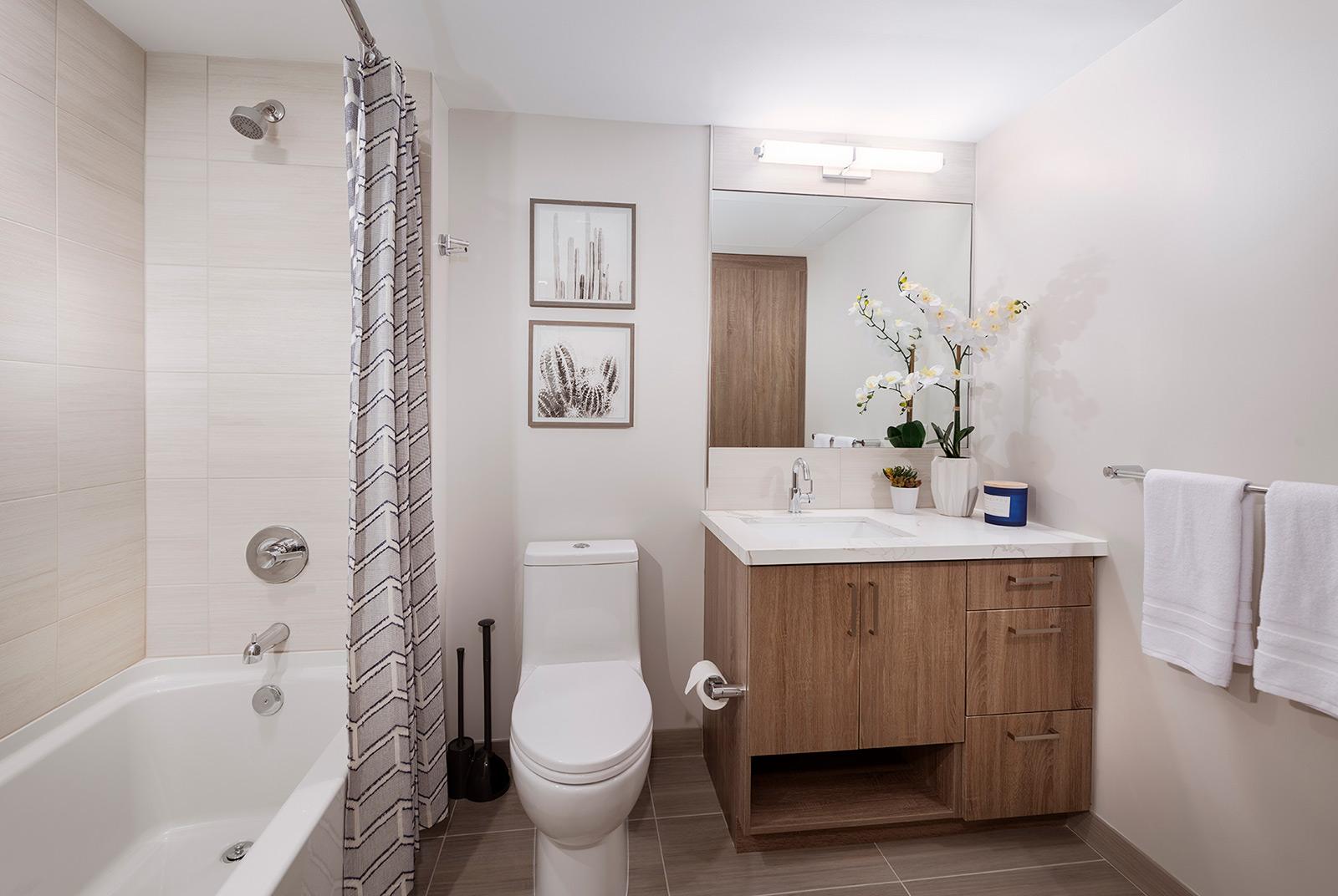 bathroom vanity mirror toilet bathtub shower